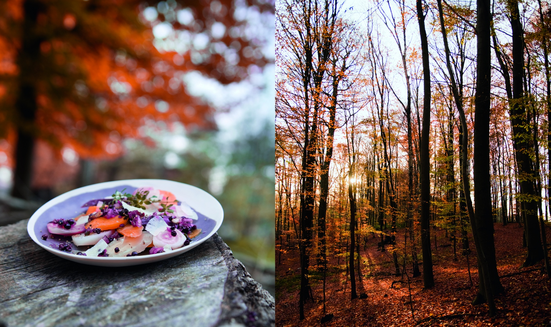 Leichte Sommerküche Claudia Seifert : Foodstyling claudia seifert foodstylistin aus hamburg
